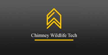 Chimney Wildlife Tech